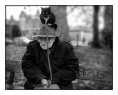 Cat on head in park