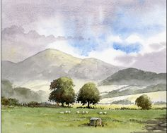 DVD/Video Clip Summer Landscapes in Watercolour with David Bellamy Art instruction DVD