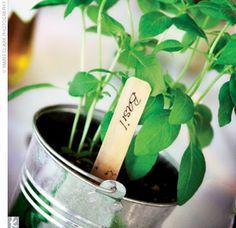 plant favors?