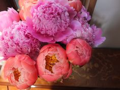 The bloom of peonies.  I do love them.