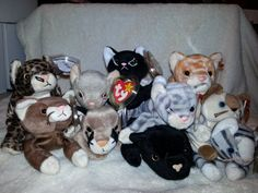 Ty Lot of 10 Beanie Baby Cats. Baby Cats 1ad8c2f90eb6