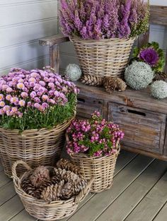 Country-style décor - country-style furniture and rustic décor .- Einrichtung im Landhausstil – Landhausmöbel und rustikale Deko Ideen Country-style furnishings – country-style furniture and rustic deco ideas - Country Style Furniture, Pot Jardin, Deco Floral, French Country House, Country Homes, Country Living, Southern Homes, French Cottage, Cottage Living