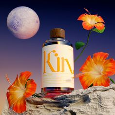 Kin Brings Wellness To Non-Boozy Nightlife Through Euphoric Beverages Creativity And Innovation, Non Alcoholic, Alcoholic Beverages, Cocktails, Brand It, Creative Studio, Packaging Design, Product Packaging, Night Life