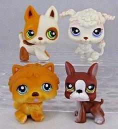 Dog Gift Shop
