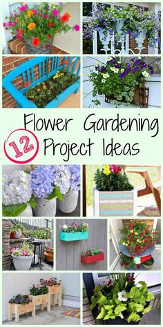 The DIY Housewives are at it again with 12 gorgeous flower gardening ideas!! I can