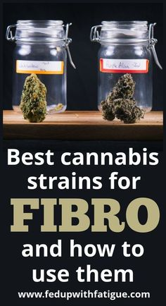 The best cannabis strains for fibromyalgia and how to use them | Fed Up with Fatigue #chronicfatiguefibromyalgia