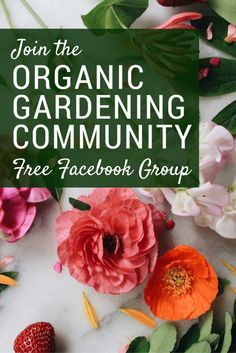 Join the Organic Gardening Community - A Free Facebook Group for New and Experienced Gardeners | Home for the Harvest