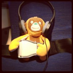 Orangutan all buckled in and ready for take off. PandaPear snapped this pic when they were on their way to make their pitch to Walmart