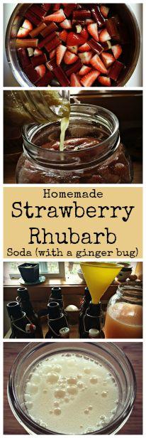 How to Make Strawberry Rhubarb Soda with a Ginger Bug~ Easy homemade natural soda! www.growforagecookferment.com