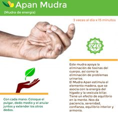 The apan mudra is one of the most important of all yoga mudras. The apan mudra is used to clear out toxins in the body and to promote inner peace and harmony.