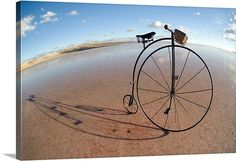 old bicycle, væltepeter, panorama, reflection, landscape, bike, beach, water