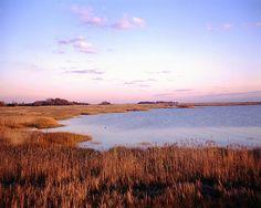 Delaware Bay Bayside - Delaware - Michael Hogan, photographer