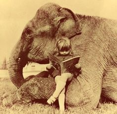 best friends. Never separate a girl from her elephant or a really good book.