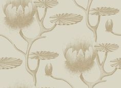 Lily (95/4019) - Cole & Son Wallpapers - A large scale all over design of a botanical lily – in gold metallic on linen, giving a magical delicate effect. More colours are available.