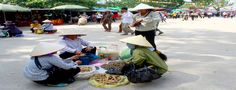Vietnamese Life, Culture, and Where to Get Your Money.