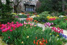 springGarden.jpg (600×402)