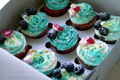 cupcakes by EvgenyBul #food #yummy #foodie #delicious #photooftheday #amazing #picoftheday