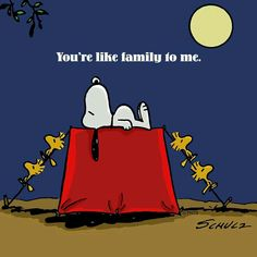 Family to me Peanuts Cartoon, Peanuts Snoopy, Peanuts Comics, Snoopy Love, Snoopy And Woodstock, Childhood Characters, Cute Beagles, Snoopy Quotes, Peanuts Quotes