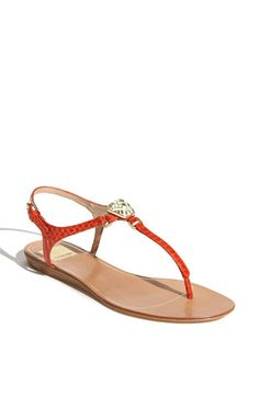 #dolcevita Want three new pairs of Dolce Vita Shoes? Enter our giveaway at http://www.facebook.com/SnapetteInc