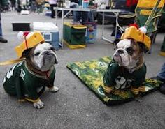 Adorable bulldogs dressed up as Packers fans. Go Pack Go!!!