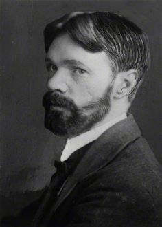 I never saw a wild thing sorry for itself. A small bird will drop frozen dead from a bough without ever having felt sorry for itself. | Complete Poems of D.H. Lawrence