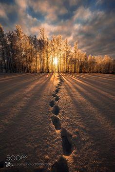 The Sunrise Path by didierlanore via http://ift.tt/2myjwUY