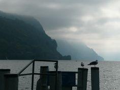 Am Wasser lässt es sich immer sehr gut arbeiten, auch wenn das Wetter gemischt ist. Die Stimmung war herrlich.