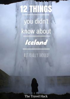 12 things you didn't know about Iceland but should! Discover more info about the first one: http://www.zigzagonearth.com/icelandic-horses/