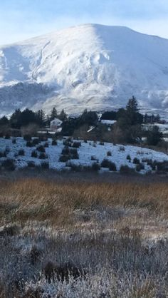 Nephin in the snow, Co Mayo (Pic: Gillien Callaghan) january 2015 Ireland County Mayo, Wintry Weather, Irish Sea, Family Roots, January 13, Republic Of Ireland, Archipelago, British Isles, Northern Ireland