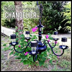 DIY Solar lights chandelier - take the bottom off of inexpensive solar powered lights and place in chandelier- hang from a tree! Outdoor Chandelier, Diy Chandelier, Solar Light Chandelier, Chandelier Planter, Chandelier Makeover, Iron Chandeliers, Backyard Lighting, Outdoor Lighting, Lighting Ideas