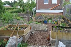 Vegetable garden with raised beds and hugelkultur inspired hill