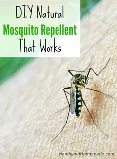DIY Natural Mosquito Repellent Recipe That Works