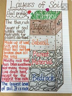 Layers of Soil Anchor Chart Teaching Biology Teaching Biology AnchorYou can find Teaching biology and more on our website.Layers of Soil Anchor Chart Teaching Biology Teaching Bio. Third Grade Science, Middle School Science, Elementary Science, Science Anchor Charts 5th Grade, 4th Grade Science Lessons, Earth Science Lessons, Science Resources, Science Education, Ag Science