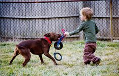 Learn more about the bond between kids and pets. #joyofpets