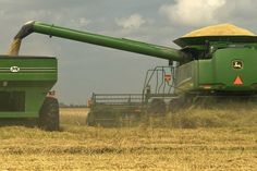 Rice harvest, Stuttgart, Arkansas