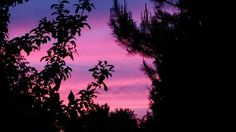 Niezwykły zachód słońca 。◕‿◕。