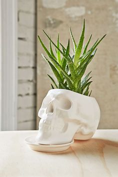 Outliving Ceramic Skull Planter