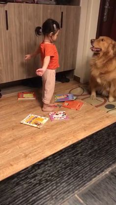 So candy 😍😍 - Pets Cute Funny Dogs, Cute Funny Animals, Cute Baby Animals, Cute Cats, Cute Animal Memes, Cute Animal Videos, Funny Animal Pictures, Youtube Animals, Pet Dogs