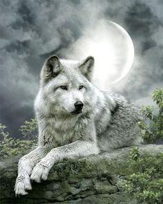 DIY Diamond Painting Wolf Embroidery Diamond Painting Cross Stitch White Wolf And Moon Rhinestone Mosaic Painting Gift VIP Beautiful Wolves, Animals Beautiful, Cute Animals, Wolf Love, Wolf Spirit, My Spirit Animal, Wolf 3d, Snow Wolf, Fantasy Wolf