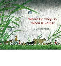 where do they go when it rains