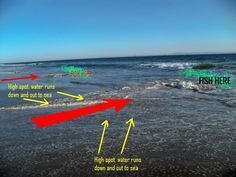 surf fishing rigs - Google Search