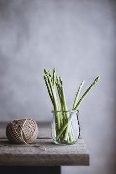 asparagus. by Miki Fujii on 500px