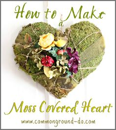 common ground : Moss Covered Heart on the Old Door