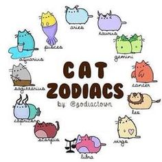 Read Pusheen from the story Zodiac scenarios by with 292 reads. Is awesome 😜🦄 Cute Animal Drawings, Kawaii Drawings, Cute Drawings, Zodiac Art, Zodiac Horoscope, Zodiac Signs, Zodiac Symbols, Funny Cats, Funny Animals
