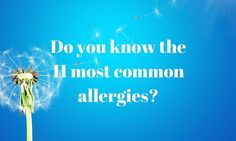 Do you know the 11 most common allergies? http://myallergyfriend.com/most-common-allergies/?utm_campaign=coschedule&utm_source=pinterest&utm_medium=My%20Allergy%20Friend&utm_content=Do%20you%20know%20the%2011%20most%20common%20allergies%3F