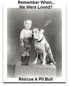 Petey from the Little Rascals, yep, was a Pit Bull.  Pit bulls...It's not the dog...it's the people