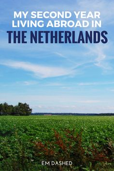 I moved to the Netherlands in September of 2014, which means we've just celebrated our second anniversary. Let's take a look at how things went in year two.