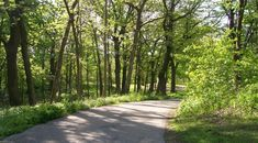 Conservation Foundation: Top 10 Kane County Nature Walks – Kane County Connects