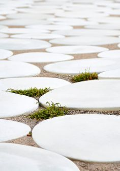 Stepping Stones, Outdoor Decor, Stair Risers
