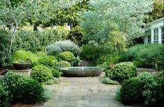 Elegant low bowl water feature in this green garden.